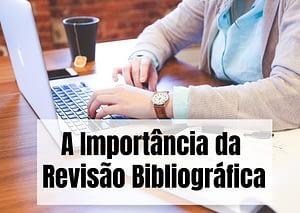 A Importancia da Revisao Bibliografica 300x213 - Início